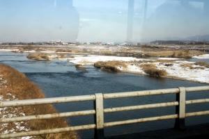 river-birds1